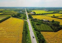 Hải Phòng: Giá đất nông nghiệp nhiều nơi tăng phi mã
